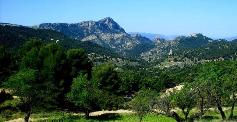 Lo scenario nel quale si concluderà la frazione di Xorret de Catí, uno dei finali più impegnativi di questa edizione della Vuelta (www.alicantenatura.es)