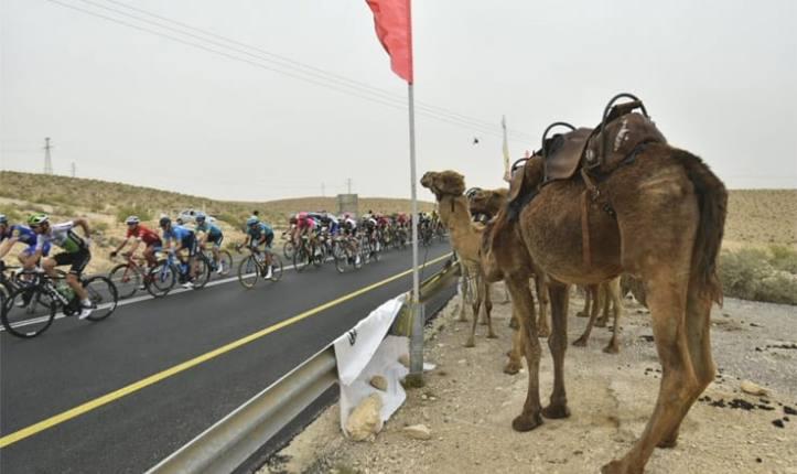 Un gruppo di cammelli assiste allinsolito passaggio del Giro dItalia nel paesaggio desertico del Negev (foto profilo Twitter Giro dItalia)