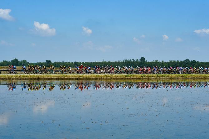 La quiete del passaggio del gruppo tra le risaie della Lomellina prima della tempesta degli ultimi 2 Km di Pratonevoso (foto Bettini)