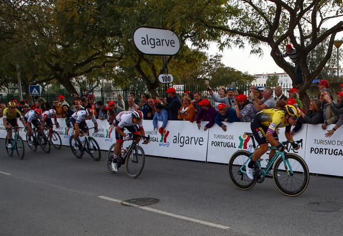 Groenewegen lanciato verso la vittoria sul rettilineo darrivo di Tafira (foto Bettini)