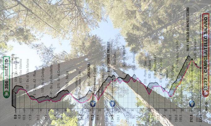 """Il bosco dei """"Giganti della Sila"""" a Camigliatello Silano e, in trasparenza, l'altimetria della settima tappa del Giro 2020 (www.camigliatellosilano.eu)"""